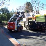 Tree Service Springdale AR 01