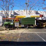 Tree Service Springdale AR 03