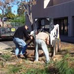 Tree Service Springdale AR 07