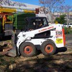 Tree Service Springdale AR 09