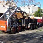 Tree Service Springdale AR 12