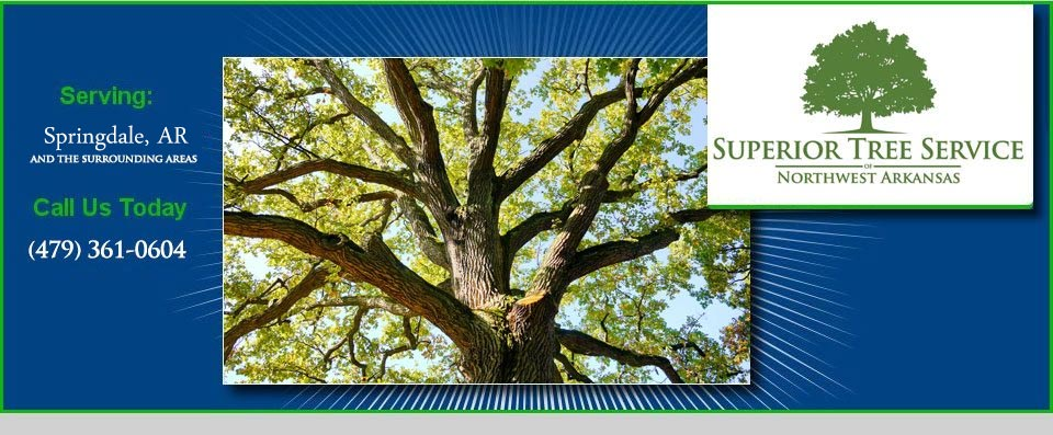 Superior Tree Service Serving Springdale AR, Call Us Today 479-361-0604